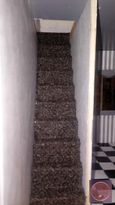 The stairs got their carpet