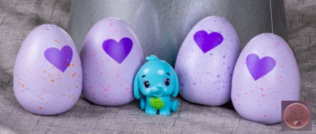 mfm Hatchimals-2604