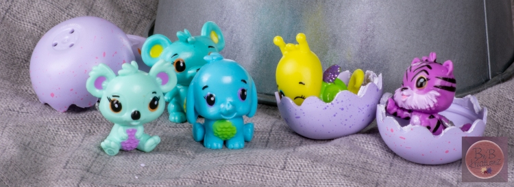 mfm Hatchimals-2606