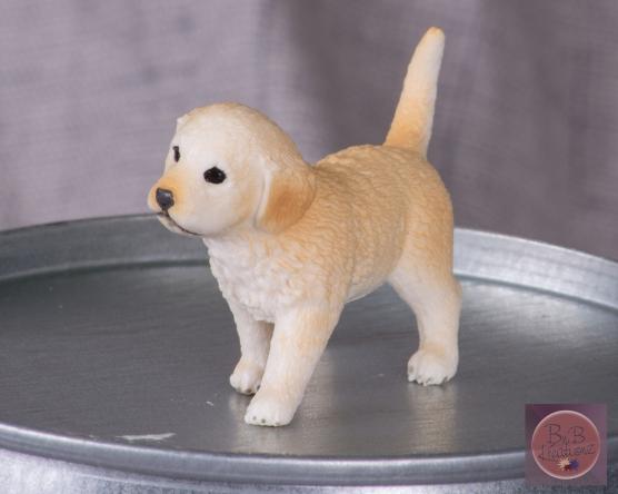 mfm schliech puppy-2618